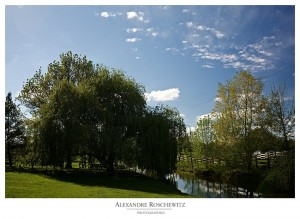 Idées de photos de couple ou photos de mariage : le parc floral de Bordeaux - Alexandre Roschewitz Photographies