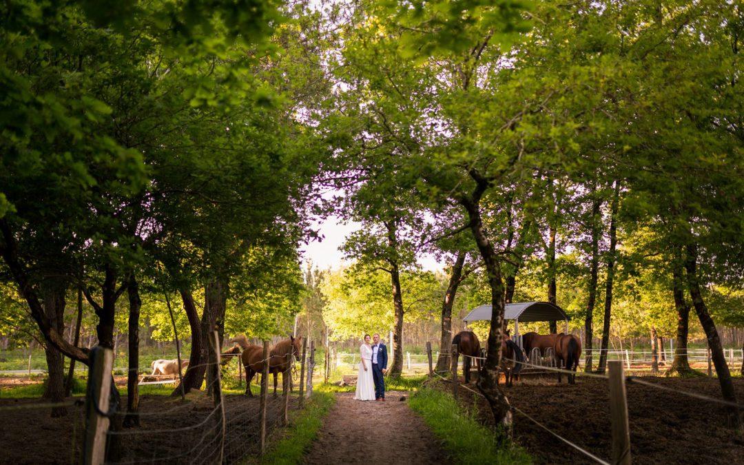 Mariage à la Colonie du Bourdiou – Camille + Romain