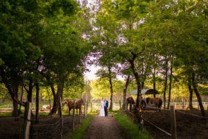 photographe couple mariage le porge